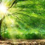 L'ésotérisme à venir, connaissance ou superstition?